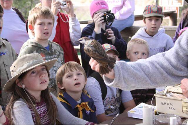 Bird Banding @ Audubon Center